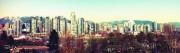 Steady City
